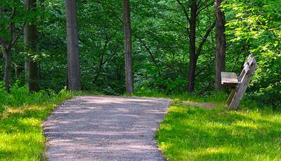 Sunnybrook Preserve Trails