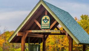 Tupelo Pond Facilities in Big Creek Park