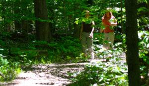 Tupelo Pond Trails